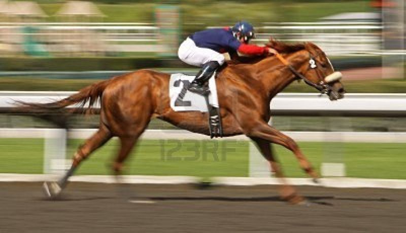 6572307-motion-blur-of-racing-horse-and-rider