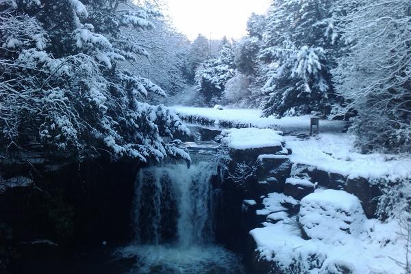 Jesmond-Dene-Snow-Scene