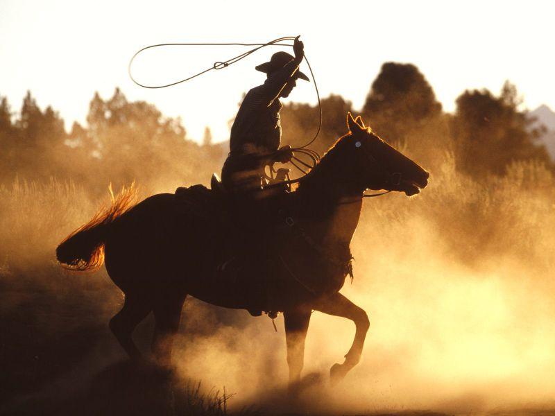 Ws_Cowboy_with_lasso_1600x1200