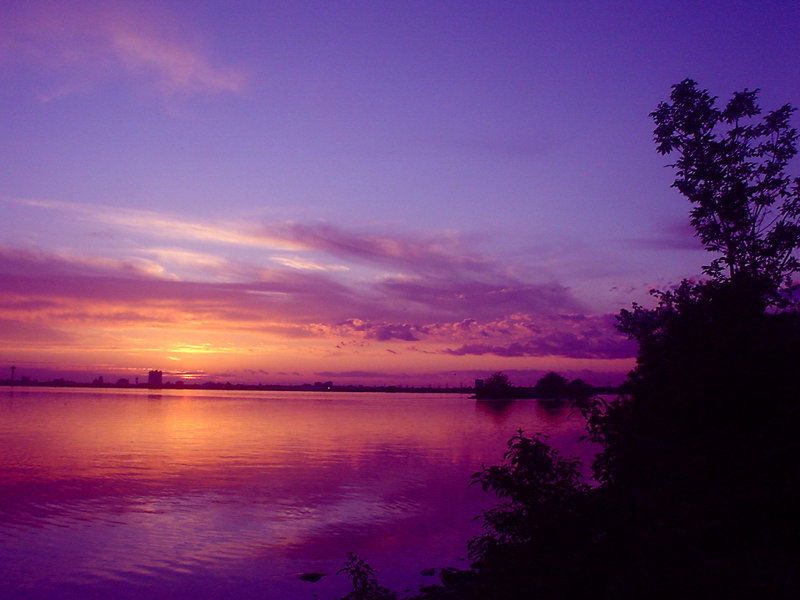 Purple_And_Pink_Sky_by_Rainbow826