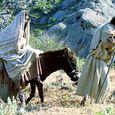 Mary-joseph-donkey