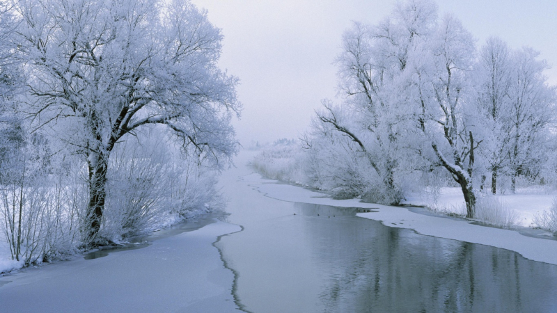 1366_Winter White Wonderland