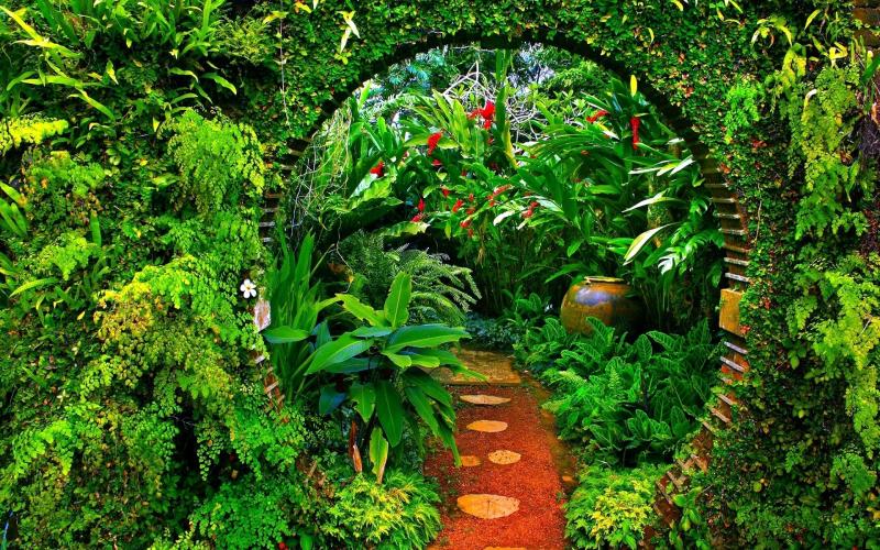 Garden-Park-Wallpaper-Free-Background-Desktop-Images-785553