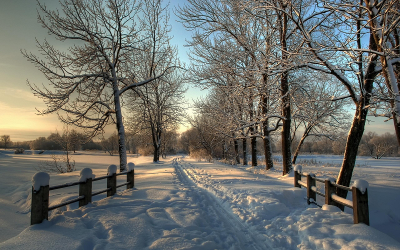 Winter_A_snow-covered_road_in_the_village_053983_