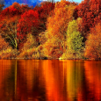 Autumn-Wallpaper-autumn