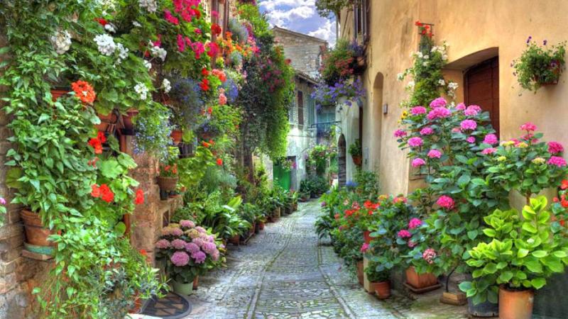 563429-1366x768-Spello-Italy