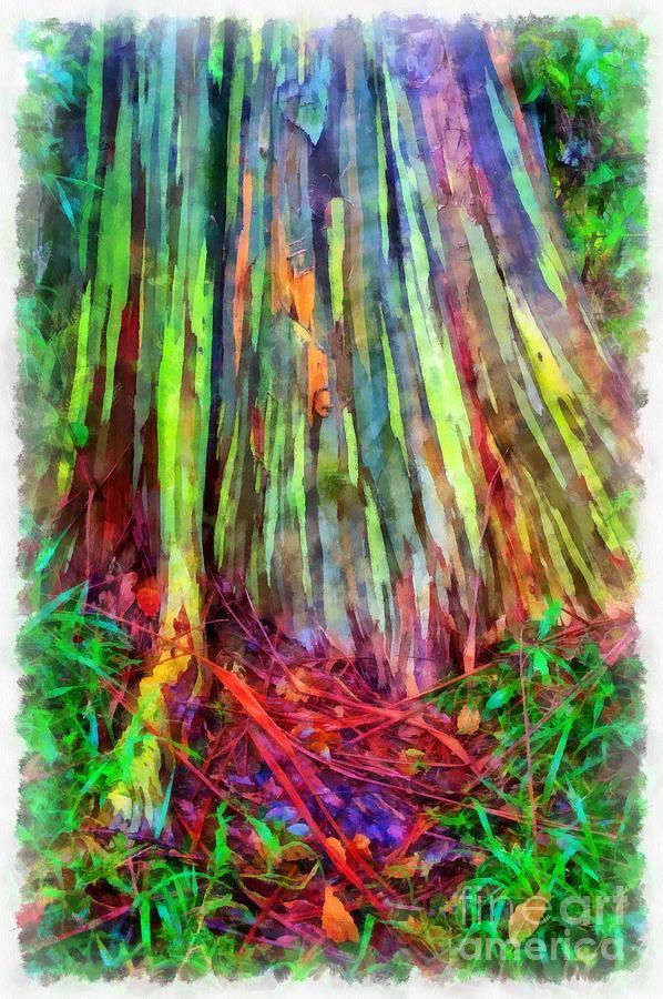 1-rainbow-trees-of-maui-hawaii-edward-fielding