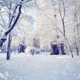 O-SNOWFALL-facebook